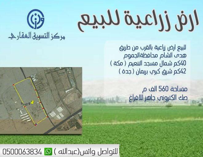 ارض زراعية بالقرب من طريق هدى الشام